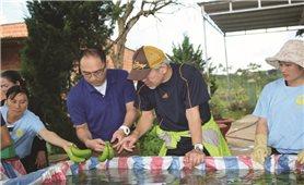 Đánh thức tiềm năng nông sản