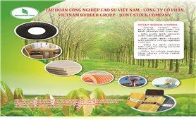 Tập đoàn Công nghiệp Cao su Việt Nam - Công ty cổ phần VietNam Rubber Group -Joint Stock Company