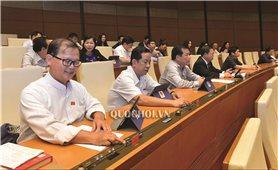 Kỳ họp thứ 8, Quốc hội khóa XIV: Biểu quyết thông qua một số dự án Luật
