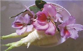 Măng nộm hoa ban