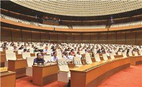 Kỳ họp thứ 8, Quốc hội khóa XIV: Thảo luận nhiều vấn đề liên quan đến pháp luật