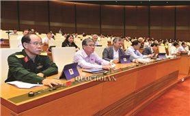Kỳ họp thứ 8, Quốc hội khóa XIV: Thông qua Nghị quyết về kế hoạch phát triển KT-XH năm 2020