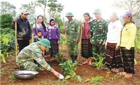 Quảng Trị: Những nông dân làm giàu trên vùng đất khó