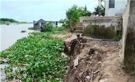 An Giang: Chi 70 tỷ đồng xử lý khẩn cấp sạt lở bờ sông Hậu