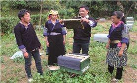 Mù Cang Chải (Yên Bái): Cơ cấu lao động chuyển dịch tích cực qua đào tạo nghề