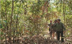 Theo chân những người giữ rừng ở Ia Kreng