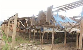 Xóa bỏ làng nghề gạch ngói Cừa: Đất bỏ hoang, người làng nghề thất nghiệp