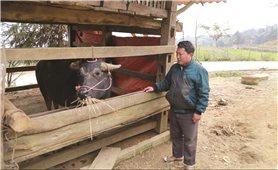 Lào Cai:  Các xã 135 gặp nhiều khó khăn trong xây dựng NTM