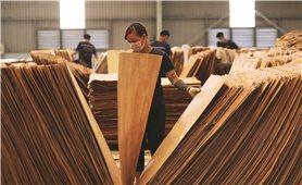 Ngành chế biến gỗ: Định hình hướng đi trong khó khăn