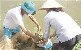 Bát Xát (Lào Cai): Người dân gặp khó vì chưa được chuyển đổi mục đích sử dụng đất
