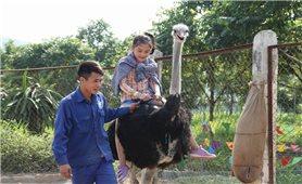Du lịch sinh thái ở Ba Vì: Điểm đến hấp dẫn