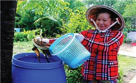 Phụ nữ Tài Văn xây dựng nông thôn mới