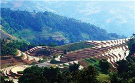 Ruộng bậc thang Hoàng Su Phì vào mùa nước đổ