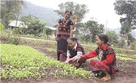 """Nâng tầm """"cam kết"""" để thoát nghèo bền vững"""