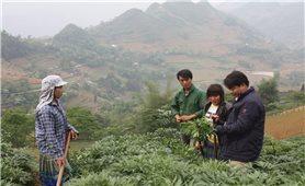 Thành tích giảm nghèo ở Si Ma Cai