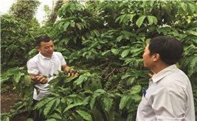 Những nông dân tiến bộ ở xã Quảng Hiệp
