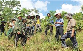 Quảng Trị: Những người hồi sinh vùng đất khó