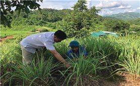 Mường Nhé (Điện Biên): Phát huy vai trò cán bộ dân tộc  thiểu số trong phát triển KT-XH