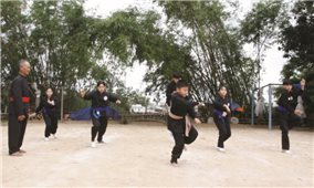 Thực hiện chương trình mục tiêu Phát triển văn hóa ở Bình Định: Hiệu quả rõ nét ở nhiều lĩnh vực