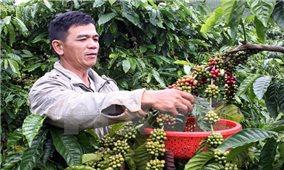 Ký kết các hiệp định vay hỗ trợ 20.000 hộ nông dân mở rộng sản xuất