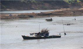 Cát tặc vẫn tung hoành trên sông Cái