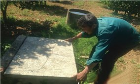 Thực hiện chính sách hỗ trợ nông dân ở Con Cuông (Nghệ An): Nhiều sai phạm cần xử lý