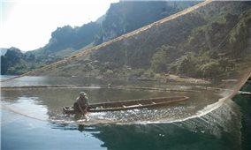Mưu sinh trên sóng nước Đà giang