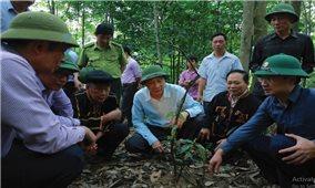 Hoành Bồ: Tập trung thực hiện 5 vấn đề trọng tâm cho vùng DTTS