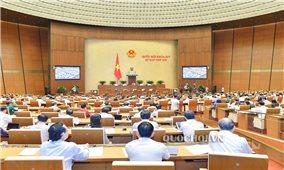 Kỳ họp thứ 7, Quốc hội khóa XIV: Quốc hội sẽ giám sát việc thực hiện chính sách, pháp luật về phòng, chống xâm hại trẻ em
