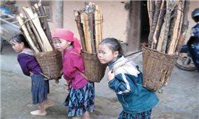 Xoá bỏ lao động trẻ em: Cần sự chung tay từ nhiều phía