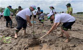 Phát động trồng rừng ngập mặn ở Đồng bằng sông Cửu Long