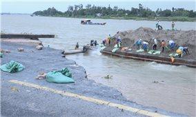 Đồng bằng sông Cửu Long: Sạt lở nghiêm trọng ở nhiều địa phương