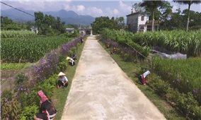 Xây dựng nông thôn mới ở vùng DTTS và miền núi: Vẫn còn nhiều thách thức