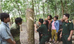 Trí thức trẻ tình nguyện đồng hành với người dân vùng sâu