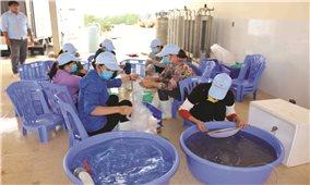 Liên kết phát triển Hợp tác xã: Tạo động lực thúc đẩy phát triển kinh tế tập thể