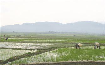 Hướng đi mới cho nông nghiệp LaiChâu