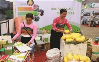 Lê Hàn Quốc và sinh kế mới của nông dân Xăm Khòe