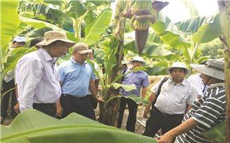 Chính sách dân tộc tạo đà phát triển cho vùng DTTS tỉnh Cà Mau