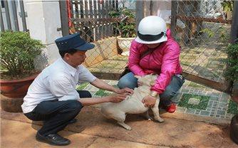 Phòng chống bệnh dại do vật nuôi cắn: Quan trọng là thay đổi thói quen