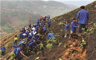 Thanh niên DTTS: Góp sức xây dựng quê hương