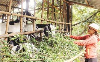 Lộc Thành nỗ lực giảm hộ nghèo DTTS
