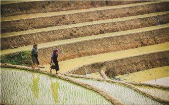 Lao động di cư và bài toán giảm nghèo đa chiều