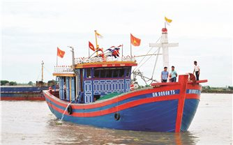 Quảng Ninh: Áp dụng công nghệ đèn LED trong khai thác thuỷ sản