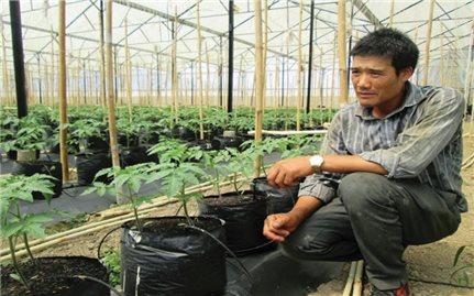 Đơn Dương (Lâm Đồng): Cần nhiều giải pháp để gìn giữ tài nguyên nước