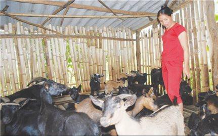 Hỗ trợ phát triển sản xuất giúp người dân thoát nghèo