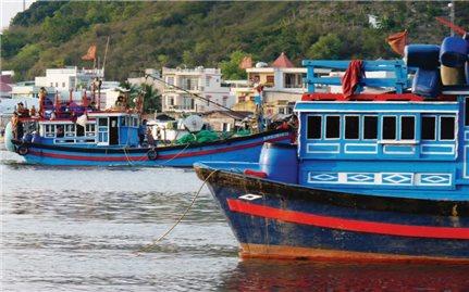 Đẩy mạnh kinh tế biển ở Bình Thuận