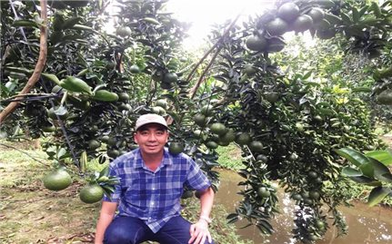 Sáng chế hữu ích của nông dân Cao Phát Triển