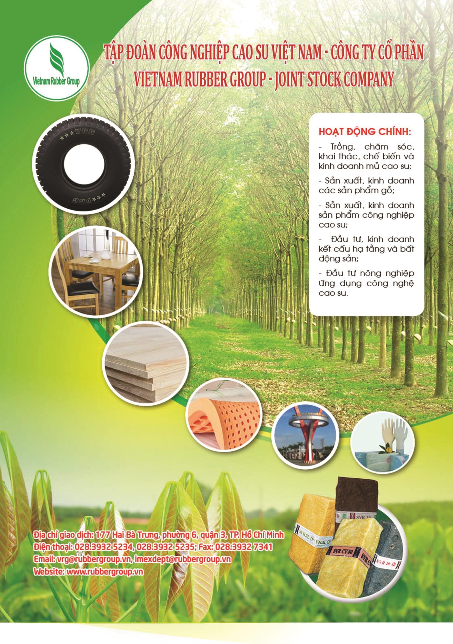 Tập đoàn công nghiệp cao su Việt Nam - Công ty cổ phần VietNam Rubber Group-Joint Stock Company