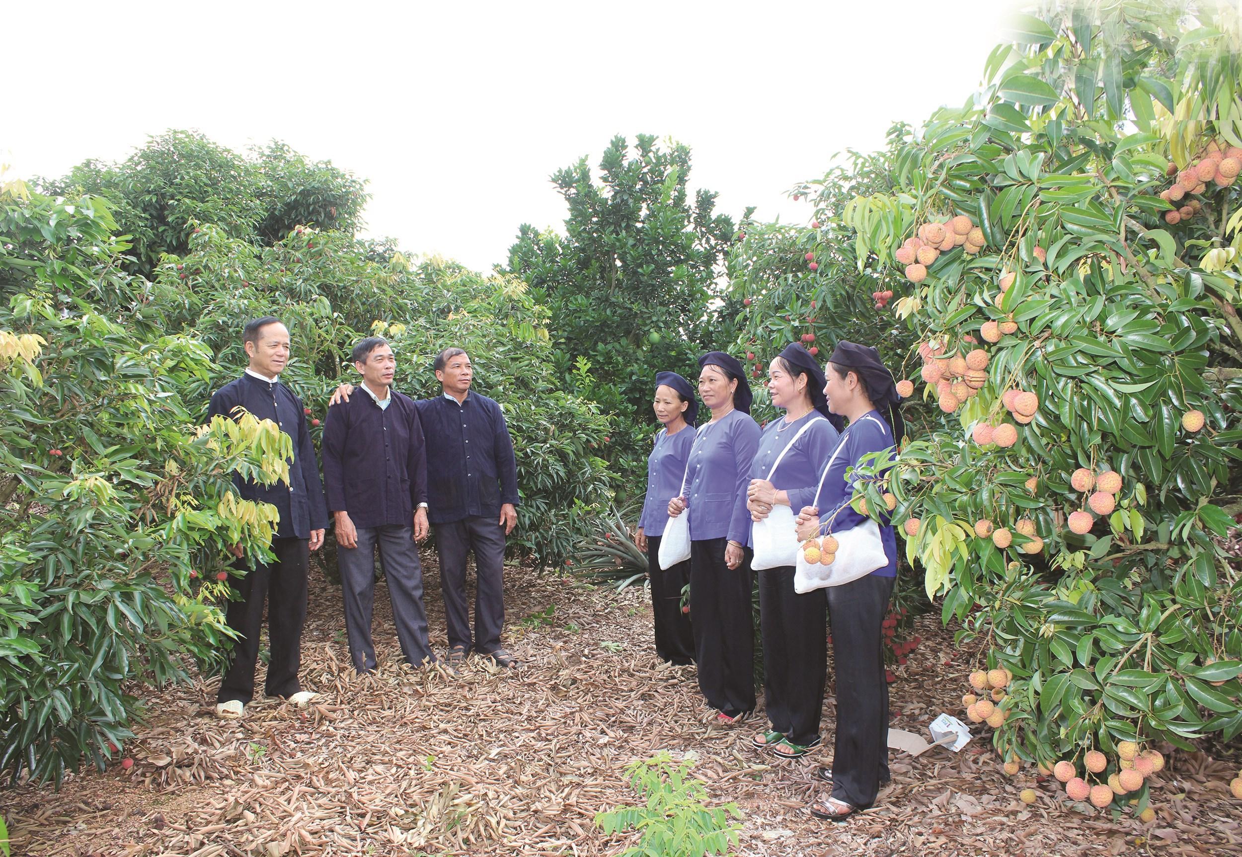 Câu lạc bộ hát dân ca Sán Chí xã Kiên Lao thể hiện một làn điệu hát giao duyên ban ngày
