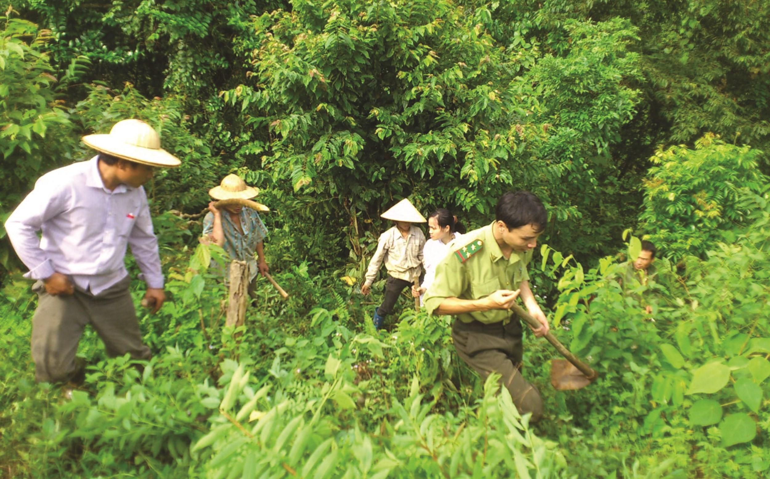 Cán bộ kiểm lâm và nhân viên tuần rừng xã Sơn Phú, Na Hang tuần tra bảo vệ rừng trên địa bàn
